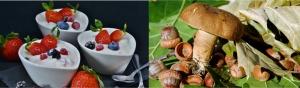 owoce-puszczy, Czy już jadłeś, Restauracje UKTA